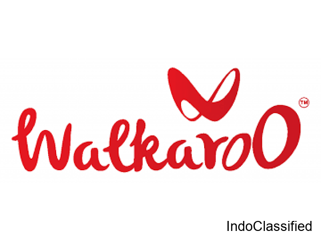 Casual Shoes At An Affordable Price - Walkaroo