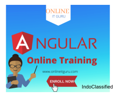 Anjularjs Online Training from experts
