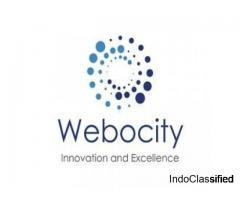Webocity Technologies: Website Designing Company in Delhi