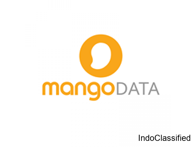 Online Marketing Agency | Mango Data