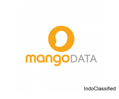 Online Marketing Agency | Mango Data