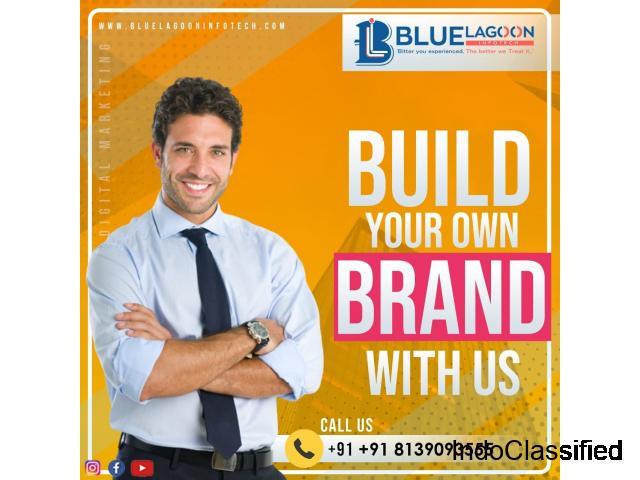 Socialmedia marketing & Digitalmarketing agency in Kochi,Kerala - Bluelagoon infotech