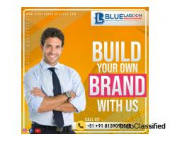 Socialmedia marketing & Digitalmarketing agency in Kochi,Kerala - Bluelagoon infotech