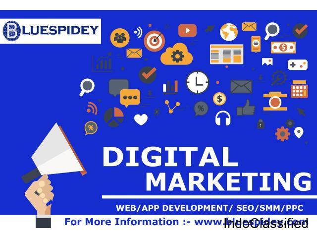 Blue Spidey | Digital Marketing Agency, SEO Services, PPC Company, Web Development