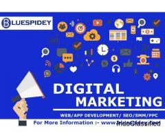 Blue Spidey | Digital Marketing Agency, SEO Services, PPC Company, Web Development