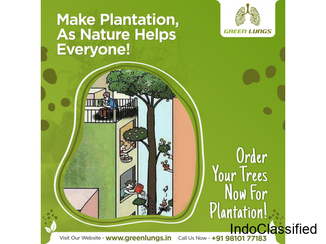 Tree Plantation Service In India | Green Lungs Earth Foundation