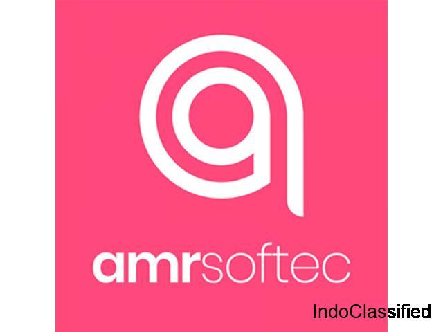 Best Web Development Agency india | Amr Softec