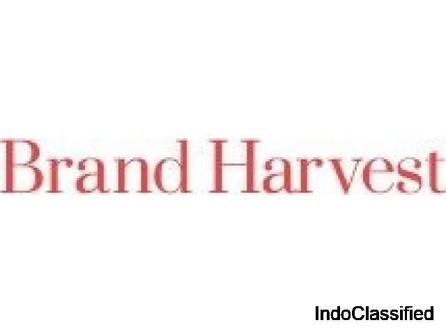 Brand Harvest- Branding Consultancy & Development Company India,Mumbai