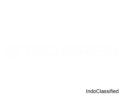 Techbrein IT Company in Calicut