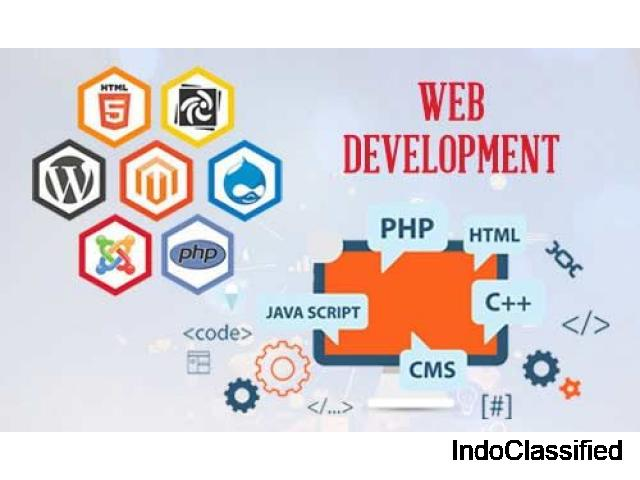 Best Website Development Services In Mumbai - Triffid