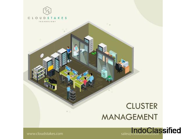 Cluster Management Services in India