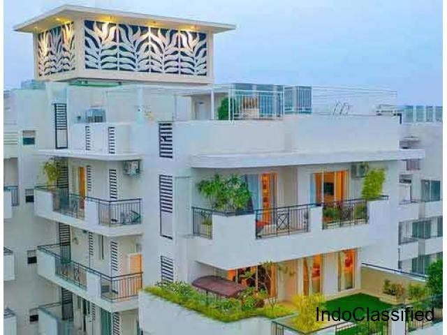 Luxury Penthouse for Sale in Gurgaon
