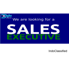 Sales Executive / Business Executive