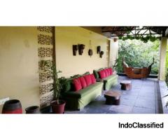 Book Luxurious Lodge to Experience Beauty of Jungle