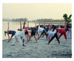 yoga teacher training couse in rishikesh India