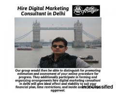 hire digital marketing consultant in delhi