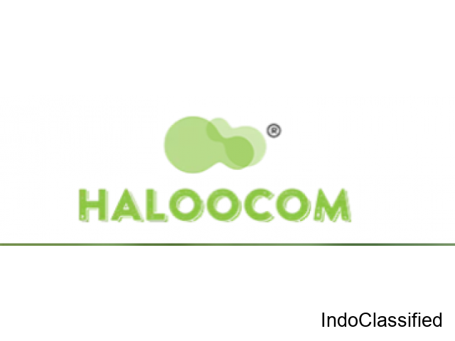 Case Study: Salesforce CRM and Haloocom Integration