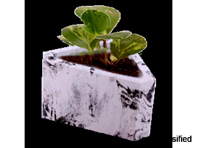 Plastic Flower Pots | Plastic Pots for Plants Online | Urbaan Green