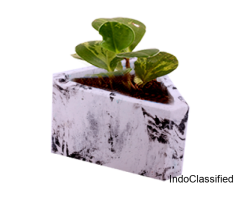 Plastic Flower Pots | Plastic Pots for Plants Online | Urbaan Green