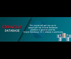 CSDT Oracle Training institute in Patna