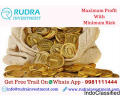 Rudra Investment Experts Provides Information Of SEBI Registered
