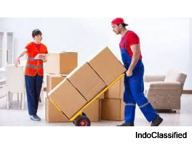 Amazing Offers by Packers and Movers in Noida