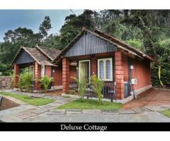 Adventurous Things To Do In Coorg