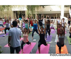 Yoga Teacher Training Classes Rishikesh