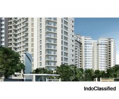 Residential Apartments in Gaur Yamuna City