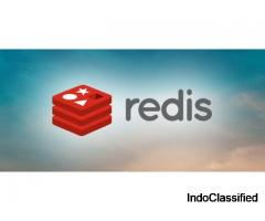 Avail the Consumption-Based Redis Server with ZippyDB