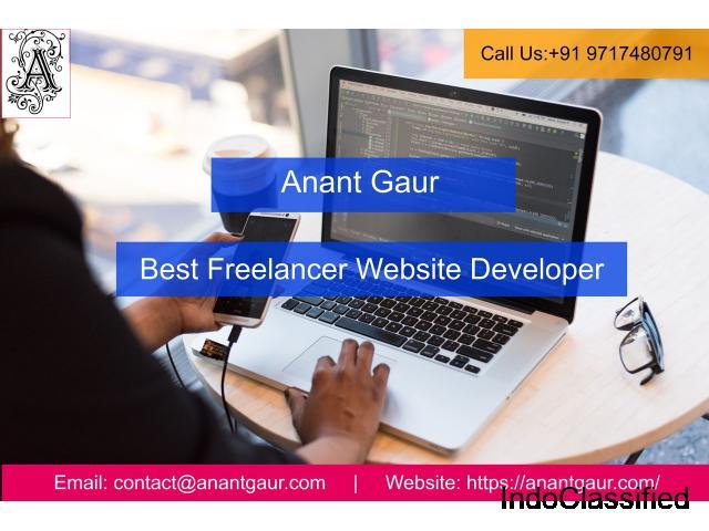 Best Freelancer Website Developer In Gurgaon