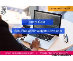 Best Freelancer Website Developer In Gurgaon