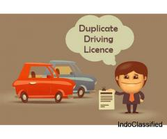 How to Apply Duplicate Driving Licence