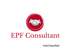 PF Consultant in Gurgaon