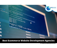 Best Ecommerce Website Development Agencies