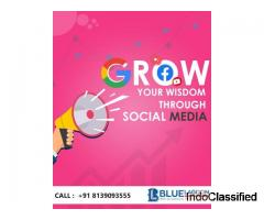 Bluelagooninfotech Digitalmarketing company in kochi,kerala