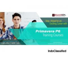 Primavera P6 Training in Noida