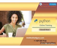 Best Python programming Online Training Free live demo