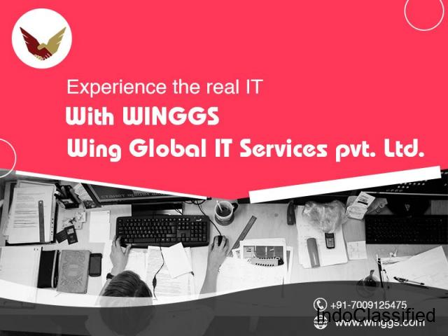 Top IT Company in Chandigarh   Wing Global IT Services Pvt. Ltd.