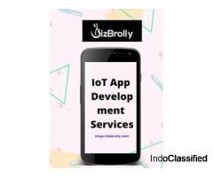 IOT Development Services in Noida