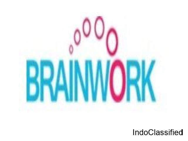 Brainwork India- Top SEO agency in Delhi