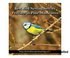 Best Bird Netting Service Provider in Pune Maharastra | Kamdhenu Bird Netting