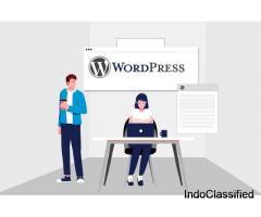 WordPress Development Services for Small Businesses | Affordable WordPress Development Services