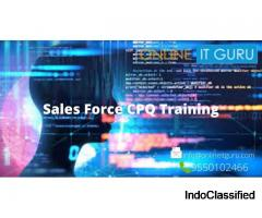 Sales Force CPQ Online Training Hyderabad|Sales force CPQ Learning Path