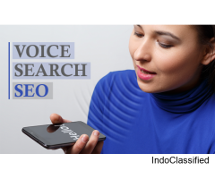 How to Get Business Discovered on Voice Search Guide To Voice Search Optimization
