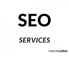 Are looking for the best SEO Company Mumbai?