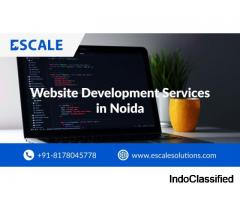 Establish Your Business With the Best Website Development Services in Noida