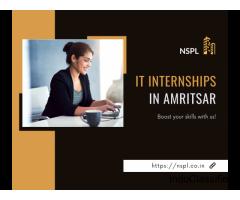 IT Internships in Amritsar