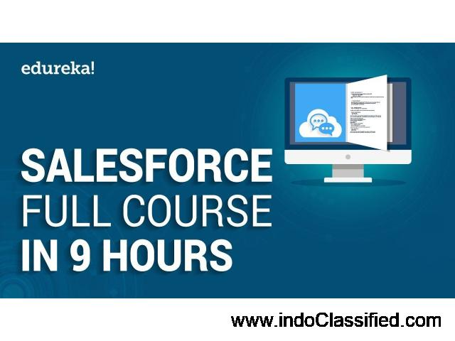Salesforce Certification Training Online - Edureka - 1