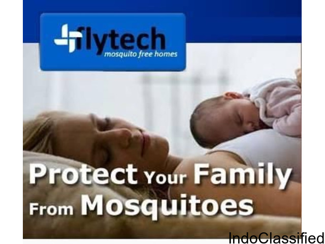 Stay Protected From Chikkungunya and Dengue Fever